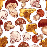 Seamless mushrooms Royalty Free Stock Images