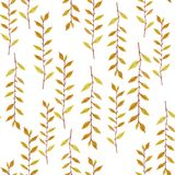 Seamless natural botanical watercolor pattern Royalty Free Stock Photos