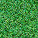 Seamless natural green grass mix background Stock Images