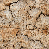Seamless natural texture - cracked clay ground Royalty Free Stock Photo