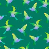 Seamless Nature Background with Hummingbirds Stock Images