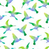 Seamless Nature Background with Hummingbirds Royalty Free Stock Photos