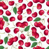 Seamless nature pattern with cherries. Royalty Free Stock Photo