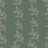 Seamless nature pattern with graphic brunch.  Hand. Drawing leaf vector illustration Royalty Free Stock Image