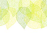 Seamless nature pattern with stylized green leaves. Nature illustration stock illustration
