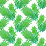Seamless nature pattern. Stock Images