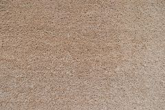 Seamless neutral brown carpet texture background.  Royalty Free Stock Photo