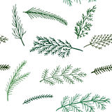 Seamless New Year pattern  background spruce twigs on a white background Royalty Free Stock Image