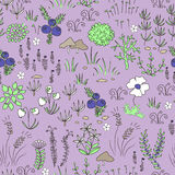 Seamless nordic natural pattern. Floral background texture Royalty Free Stock Photos