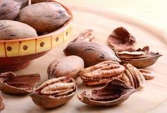 seamless nuts pecannöt för bakgrundsillustration Fotografering för Bildbyråer