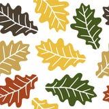 Seamless oak leaves pattern Stock Image