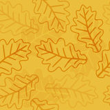 Seamless oak leaves pattern Stock Images