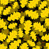 Seamless of Oak leaves. Pattern of forest leaves for your design Stock Image