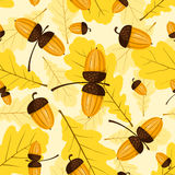 Seamless oak pattern. Acorns and leaves. Vector background Royalty Free Stock Photos