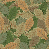 Seamless Oak Tree Leaves Background Stock Image