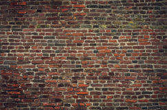 Seamless old brick wall texture. High resolution Stock Image