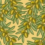 Seamless olive background Stock Images