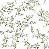 Seamless olive branch pattern hand drawn Stock Images