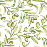 Seamless olive. Stock Images