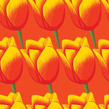 Seamless orange background with red tulips. Stock Photography