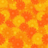 Seamless orange floral pattern. Vector seamless floral pattern with orange flowers Stock Images
