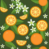Seamless orange fruit and flowers texture 545 Stock Images