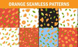 Seamless Floral Pattern set . Orange Fruits Background. Flowers, Leaves. Vector flat style Stock Photos