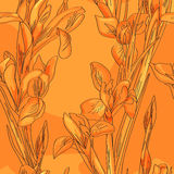 Seamless orange irises Royalty Free Stock Photography