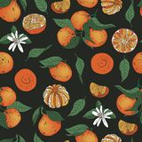 Seamless orange mandarin tangerine with leaves vector pattern. Colorful background royalty free illustration