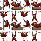 Seamless orangutan Stock Image