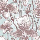 Seamless orchid floral pattern. Vector, EPS10 Royalty Free Stock Photo