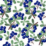Seamless ornament 266 royalty free illustration
