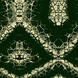 Seamless ornament  pattern in abstract style. Seamless abstract pattern in dark green and beige tones Stock Image
