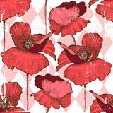 Seamless ornament with poppy flowers Stock Photos