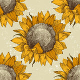 Seamless ornament with sunflowers Stock Photo