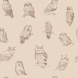 Seamless ornament with various owls in retro style. Seamless ornament with a various owls in retro style Royalty Free Stock Photography