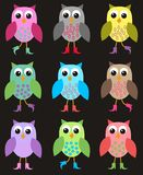 Seamless owl pattern. Colourful seamless owl pattern on black background Stock Photography
