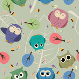 Seamless owl pattern. Seamless pattern with vector owls and decoration Royalty Free Stock Photos