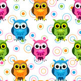 Seamless owl pattern. Seamless pattern of cute and fun cartoon owls in colorful pink, blue, green and orange with random circle pattern over white Stock Photos