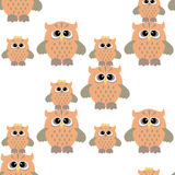 Seamless owl pattern. Seamless pattern with nice colorful owl bird Stock Photography