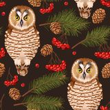 Seamless owl, rowan and fir branches Stock Photos