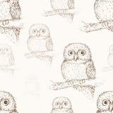 seamless owlmodell Royaltyfria Foton