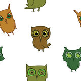 Seamless owls, funy birds Stock Images