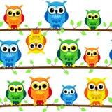 Seamless owls on tree branch Stock Photo