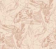 Seamless paleontology pattern with bones Stock Images