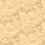 Seamless paleontology pattern with bones Royalty Free Stock Photos