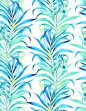 Seamless palm pattern Royalty Free Stock Images
