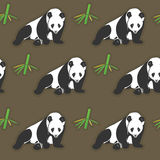 Seamless panda and bamboo wallpaper Royalty Free Stock Photography