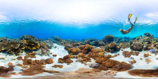 Seamless panorama of the sea floor Stock Images