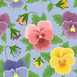 Seamless pansies pattern Royalty Free Stock Photo